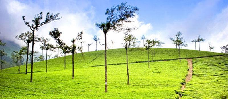 Hill-Stations-Extravaganza-Kerala
